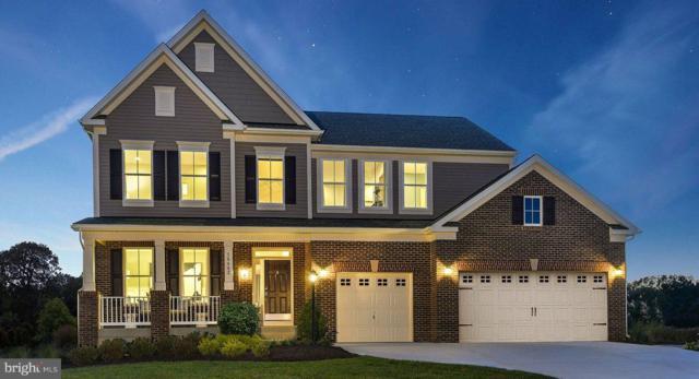 Baron Drive- Concord, FREDERICKSBURG, VA 22408 (#VASP147638) :: Cristina Dougherty & Associates
