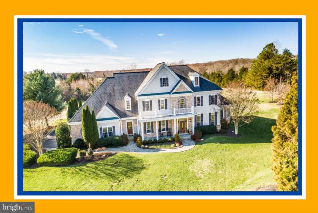10 Stefaniga Farms Drive, STAFFORD, VA 22556 (#VAST147602) :: Great Falls Great Homes