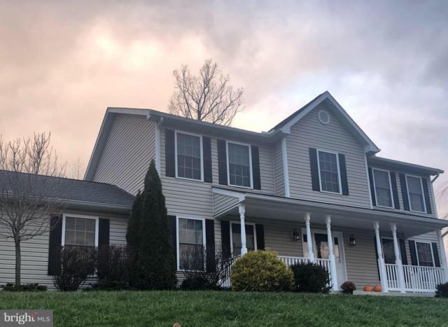 13905 Rolling Oak Drive, ELLERSLIE, MD 21529 (#MDAL115656) :: Maryland Residential Team