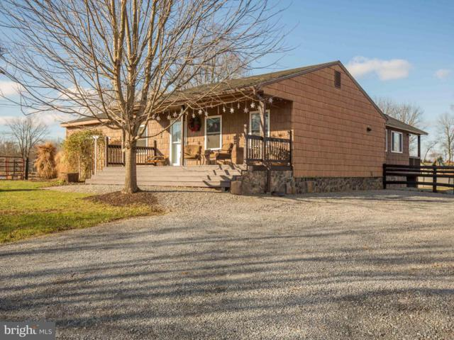 763 Crums Church Road, BERRYVILLE, VA 22611 (#VACL104028) :: The Dailey Group
