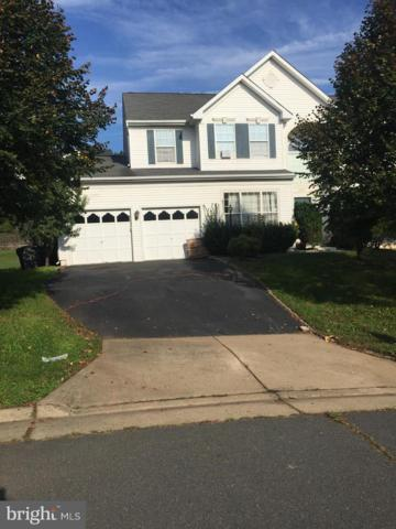 20327 Snowpoint Place, ASHBURN, VA 20147 (#VALO231746) :: RE/MAX Executives