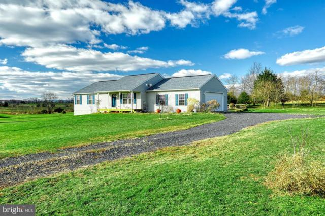 232 Double Play Drive, GETTYSBURG, PA 17325 (#PAAD101948) :: The Craig Hartranft Team, Berkshire Hathaway Homesale Realty