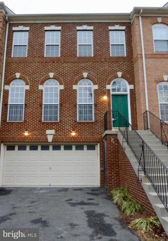 41952 Beryl Terrace, ALDIE, VA 20105 (#VALO231820) :: Frontier Realty Group