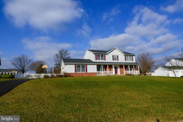 66 Brook Meadow Circle, SHREWSBURY, PA 17361 (#PAYK104072) :: The Jim Powers Team