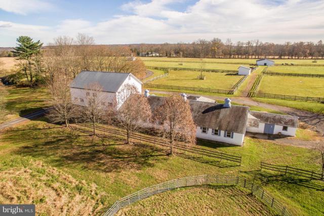 55 Municipal Road, PIPERSVILLE, PA 18947 (#PABU204472) :: Linda Dale Real Estate Experts
