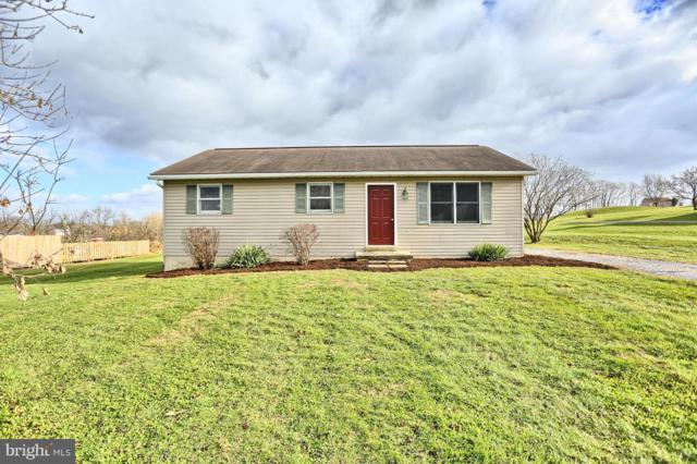 259 Millardsville Road, RICHLAND, PA 17087 (#PALN102482) :: Teampete Realty Services, Inc