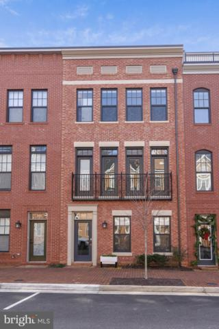 243 Crescent Station Terrace SE, LEESBURG, VA 20175 (#VALO232578) :: The Speicher Group of Long & Foster Real Estate