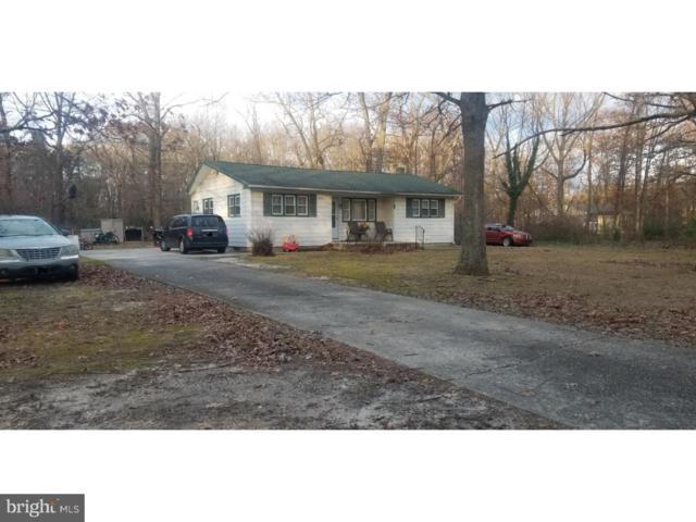 2547 Grant Avenue, WILLIAMSTOWN, NJ 08094 (#NJSU100002) :: Remax Preferred | Scott Kompa Group