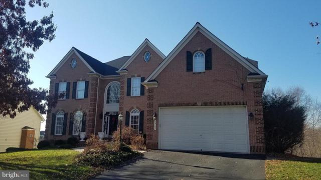 19107 Dalton Points Place, LEESBURG, VA 20176 (#VALO232646) :: Network Realty Group