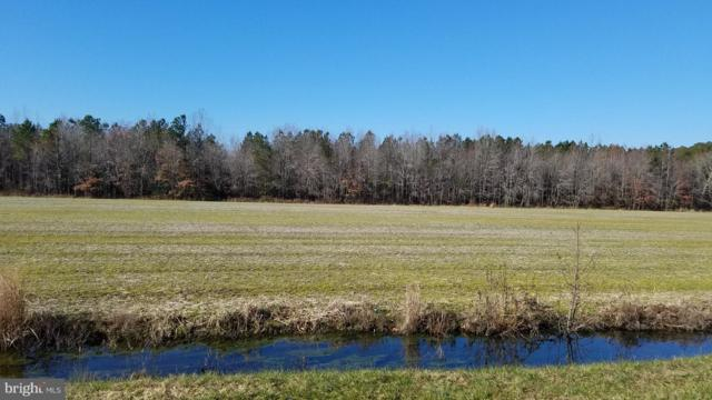 Lot# 14 Anderson Road, PRINCESS ANNE, MD 21853 (#MDSO100990) :: RE/MAX Coast and Country