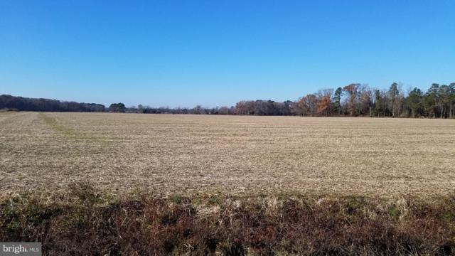Lot# Anderson Road, PRINCESS ANNE, MD 21853 (#MDSO100992) :: RE/MAX Coast and Country