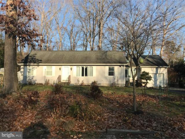 34025 Moccasin Way, DAGSBORO, DE 19939 (#DESU126810) :: RE/MAX Coast and Country