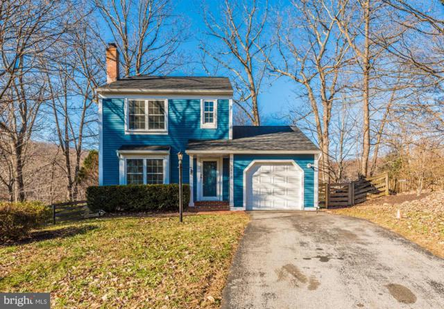 3806 Pippins Place, POINT OF ROCKS, MD 21777 (#MDFR179918) :: Jim Bass Group of Real Estate Teams, LLC