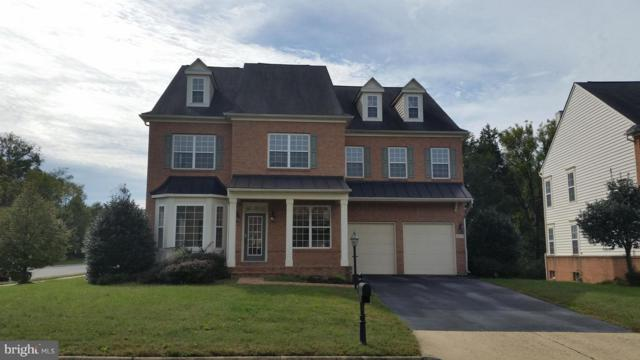 46071 Earle Wallace Circle, STERLING, VA 20166 (#VALO246520) :: The Greg Wells Team