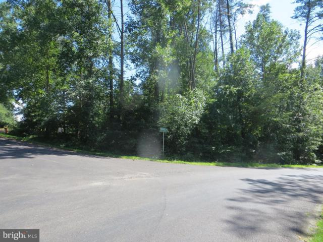 100 Pine Valley Road, LOCUST GROVE, VA 22508 (#VAOR113332) :: The Riffle Group of Keller Williams Select Realtors