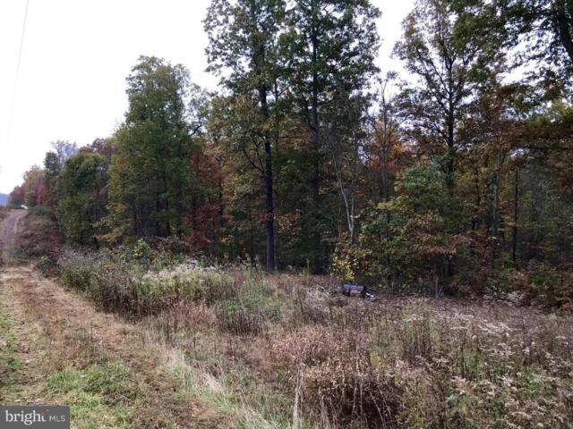 9.6 acres Householder Road, BERKELEY SPRINGS, WV 25411 (#WVMO107362) :: Pearson Smith Realty