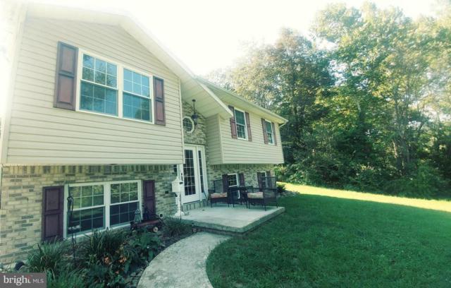 46 Ravens Drive, KEYSER, WV 26726 (#WVMI104728) :: Colgan Real Estate