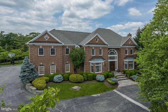 12620 Tribunal Lane, POTOMAC, MD 20854 (#MDMC449602) :: The Sky Group