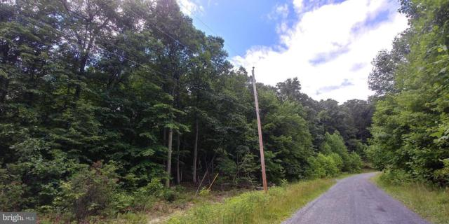 16 Glastonbury Drive A, HEDGESVILLE, WV 25427 (#WVBE131704) :: Great Falls Great Homes