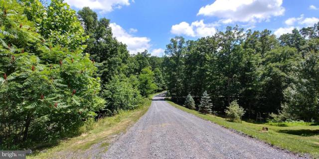 15 Pale Magnolia Drive B, GERRARDSTOWN, WV 25420 (#WVBE131712) :: Great Falls Great Homes