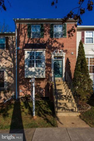6706 Jenny Leigh Court, CENTREVILLE, VA 20121 (#VAFX632258) :: The Piano Home Group