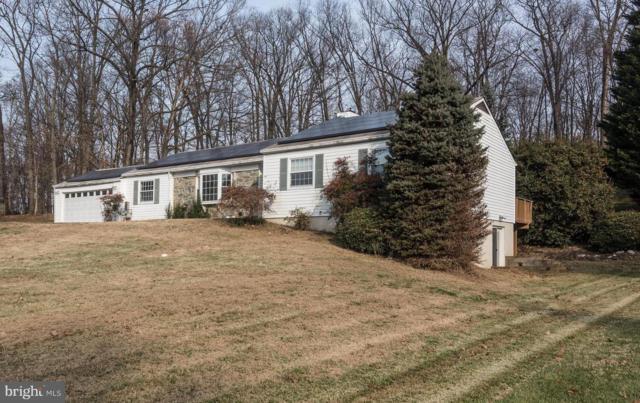 11110 Mountain View Lane, IJAMSVILLE, MD 21754 (#MDFR184606) :: Jim Bass Group of Real Estate Teams, LLC
