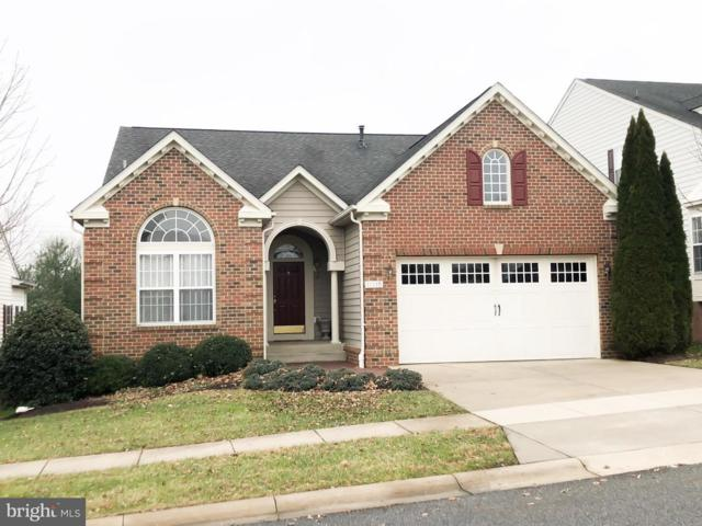 11915 Hampstead Green #88, ELLICOTT CITY, MD 21042 (#MDHW200990) :: ExecuHome Realty