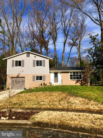 10028 Llewellyn Court, FAIRFAX, VA 22032 (#VAFX743400) :: The Sebeck Team of RE/MAX Preferred