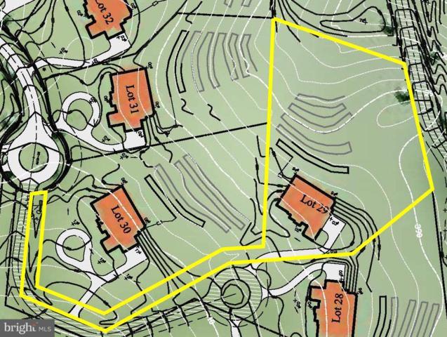 15737 Seneca Run Court, DARNESTOWN, MD 20874 (#MDMC485626) :: Dart Homes
