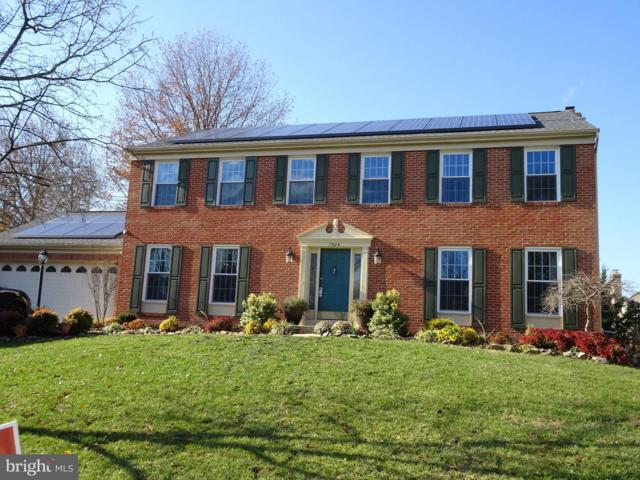 7804 Limestone Court, ELLICOTT CITY, MD 21043 (#MDHW208626) :: ExecuHome Realty