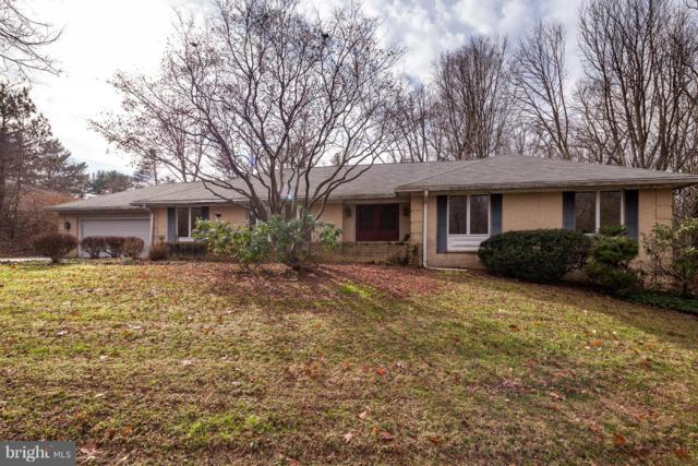 51 Windemere Parkway, PHOENIX, MD 21131 (#MDBC330296) :: ExecuHome Realty