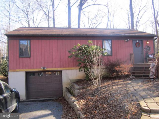 171 Tuckahoe Road, DILLSBURG, PA 17019 (#PAYK104798) :: The Joy Daniels Real Estate Group