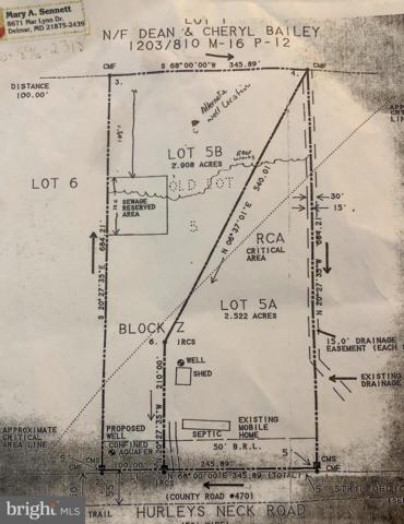 8381 Hurleys Neck Road, MARDELA SPRINGS, MD 21837 (#MDWC100938) :: The Riffle Group of Keller Williams Select Realtors