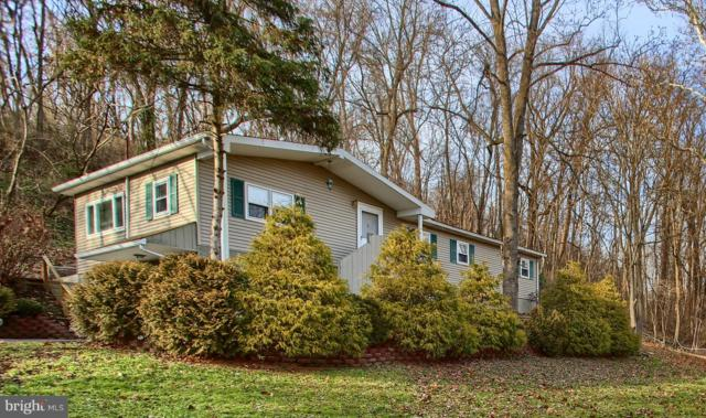 198 Creekside Drive, ENOLA, PA 17025 (#PACB105742) :: The Heather Neidlinger Team With Berkshire Hathaway HomeServices Homesale Realty