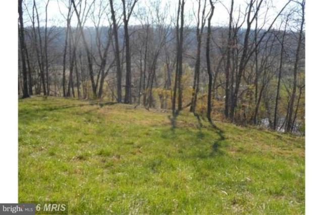 12 Creekside, CAPON BRIDGE, WV 26711 (#WVHS105968) :: ExecuHome Realty