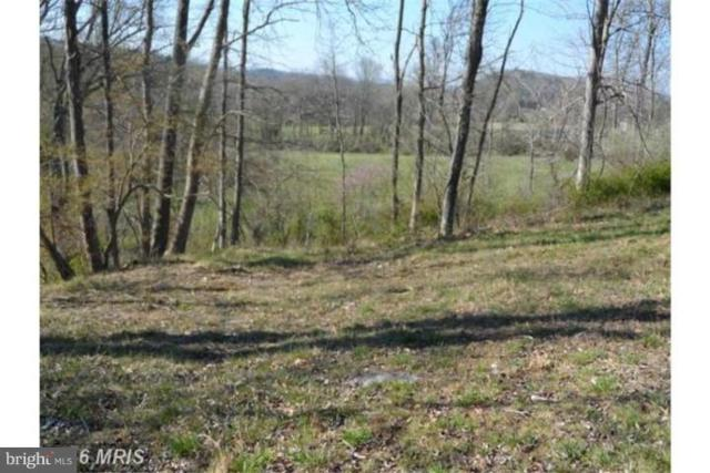 16 Creekside, CAPON BRIDGE, WV 26711 (#WVHS105970) :: ExecuHome Realty