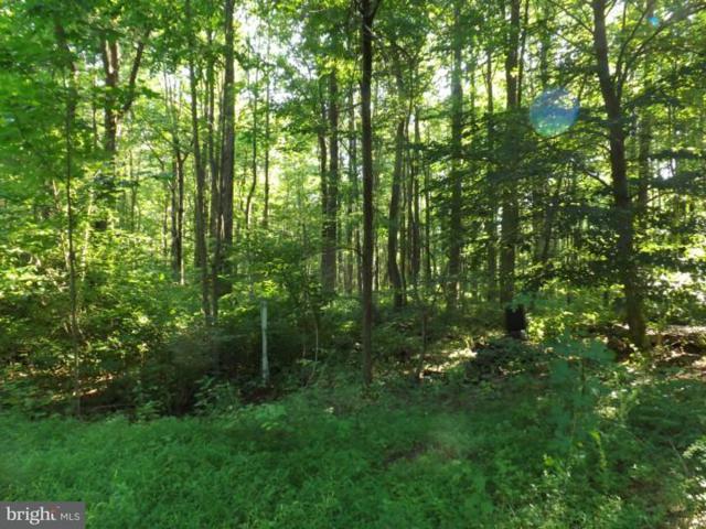 000 Mine Spring Road, UPPER BLACK EDDY, PA 18972 (#PABU306868) :: LoCoMusings