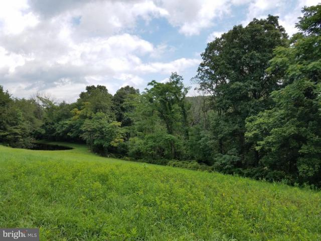 Truman St. Ext, BERKELEY SPRINGS, WV 25411 (#WVMO108500) :: Hill Crest Realty