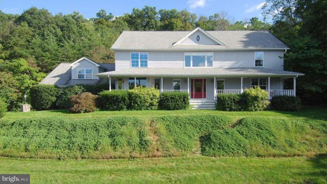 209 Park Ridge Court, FRONT ROYAL, VA 22630 (#VAWR118100) :: Bruce & Tanya and Associates