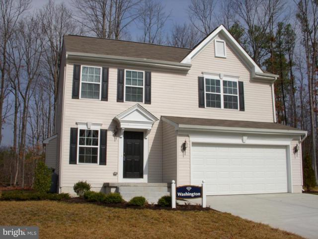201 South Stream Drive, ELKTON, MD 21921 (#MDCC134752) :: The Miller Team