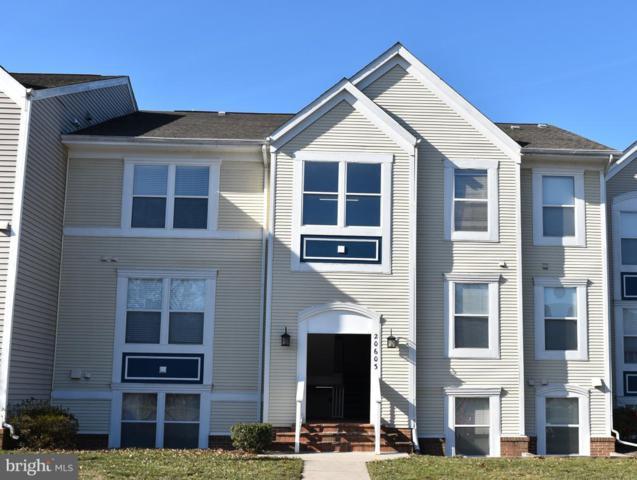20603 Cornstalk Terrace #102, ASHBURN, VA 20147 (#VALO267230) :: The Greg Wells Team