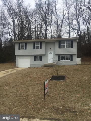 9826 Meadowview Drive, NEWBURG, MD 20664 (#MDCH162966) :: Great Falls Great Homes