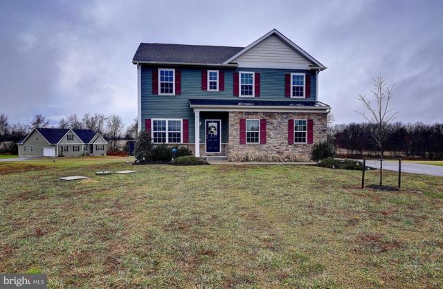 711 Beaver Creek Road, HAGERSTOWN, MD 21740 (#MDWA136496) :: The Bob & Ronna Group