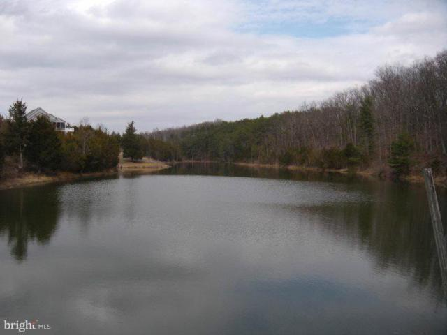 LOT #10 Great Lake Drive, MIDDLETOWN, VA 22645 (#VAWR118142) :: Bruce & Tanya and Associates