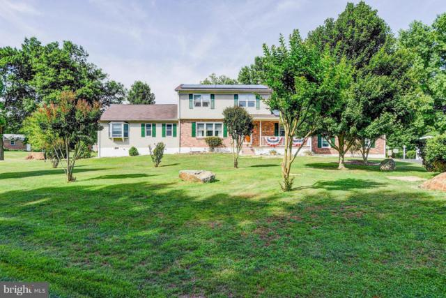 14 Bowfin Drive, NEWARK, DE 19702 (#DENC316840) :: Compass Resort Real Estate