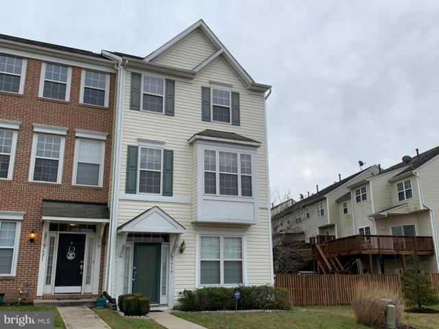 2619 Gray Ibis Court, ODENTON, MD 21113 (#MDAA302122) :: Great Falls Great Homes