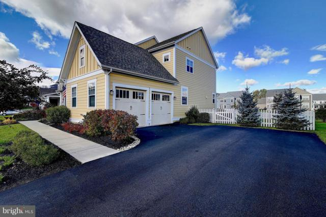 24584 Lavender Grove Drive, ALDIE, VA 20105 (#VALO267498) :: Circadian Realty Group