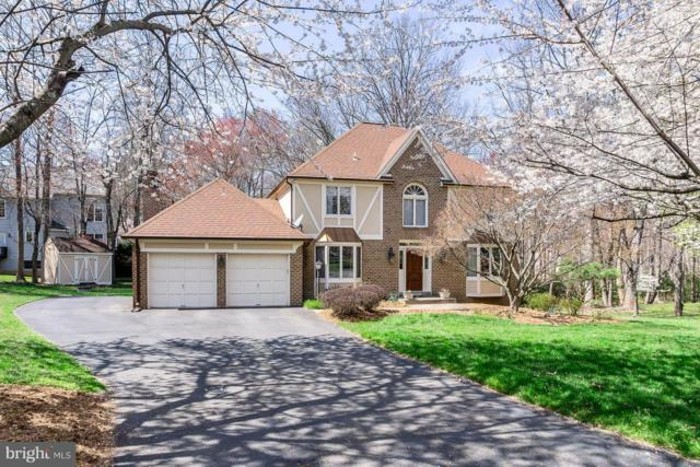 2900 Taj Drive, OAKTON, VA 22124 (#VAFX745374) :: Colgan Real Estate