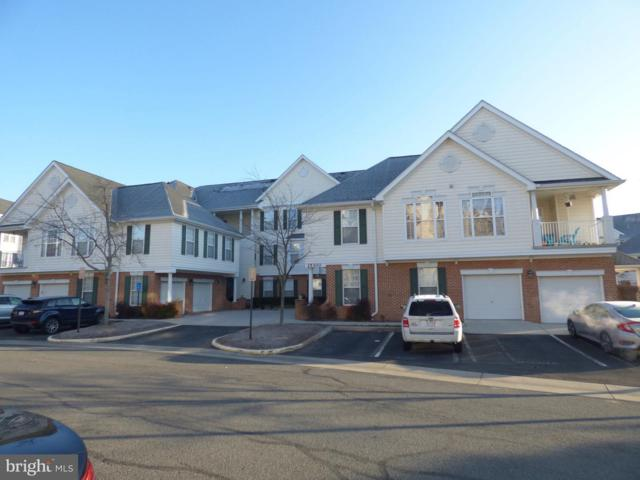 25300 Lake Mist Square #203, CHANTILLY, VA 20152 (#VALO267554) :: Colgan Real Estate