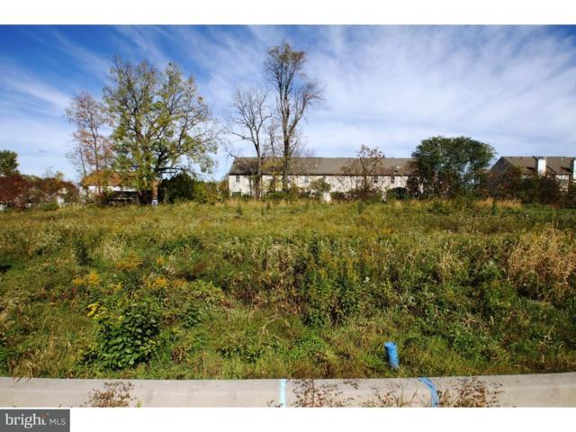 116 Lidia Lane, BLANDON, PA 19510 (#PABK247632) :: John Smith Real Estate Group